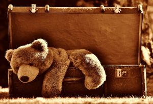soft toy, teddy bear inside luggage