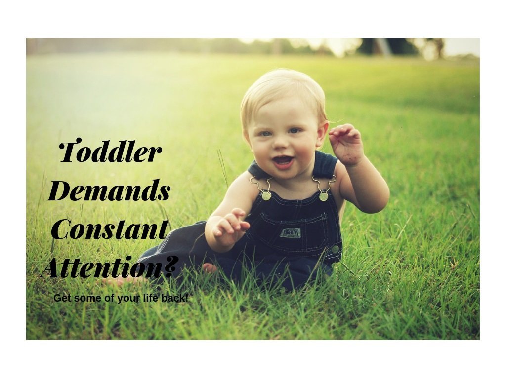 Your Toddler demands constant attention